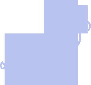 Pets Footsteps